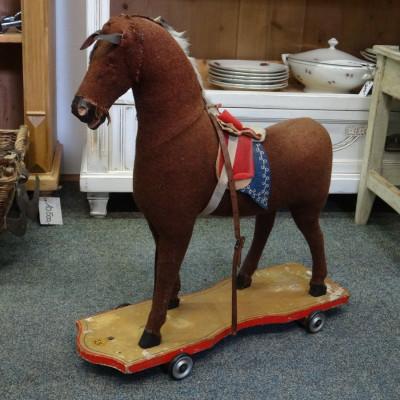 Jezdící koník