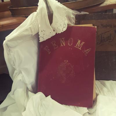 Kniha Fenoma