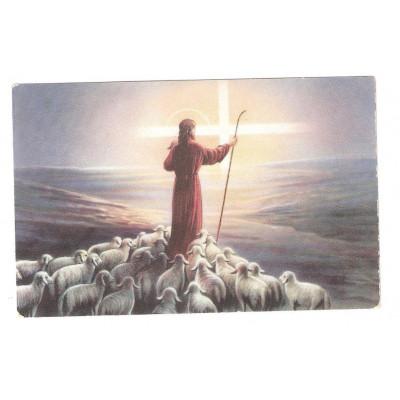 Přání umělecké Pastýř